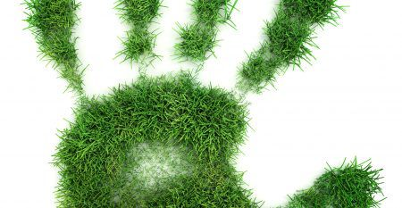 Hand print of grass